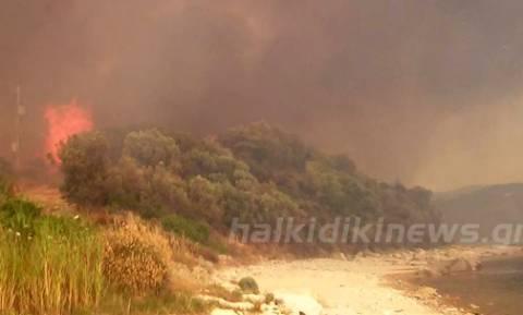 Κομίτσα Χαλκιδικής: Μικρή ύφεση παρουσιάζει το μέτωπο - Ολονύκτια μάχη με τις φλόγες
