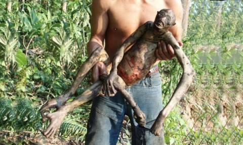 Σοκαριστικό βίντεο: Μυστηριώδες πλάσμα βρέθηκε νεκρό στον Αμαζόνιο