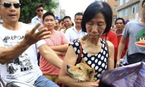 Κίνα: Υπερασπιστές των δικαιωμάτων των ζώων κυνηγήθηκαν στο «φεστιβάλ της ντροπής»