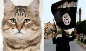 «Θα γίνω τζιχαντιστής γιατί μου πήραν τη... γάτα μου»