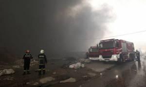 Πυρκαγιά στον Ασπρόπυργο: Έκθεση του Αστεροσκοπείου Αθηνών για τους αέριους ρύπους