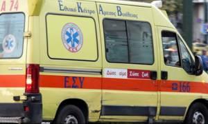 Λαμία: Στο νοσοκομείο μαθήτρια από επίθεση αδέσποτων σκύλων