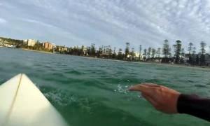 Καρχαρίας περιτριγυρίζει σέρφερ λίγο πριν του επιτεθεί! (video)