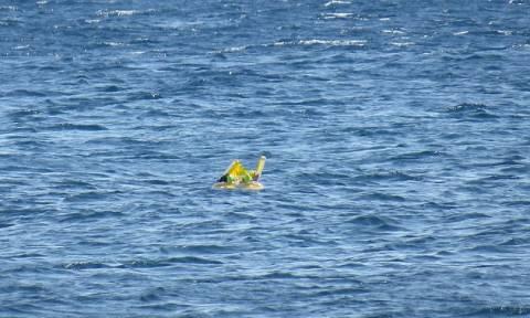 Αραχτοί σε τουρκική παραλία ξέχασαν το μωρό στη θάλασσα - Το βρήκε η ακτοφυλακή στη Λέσβο