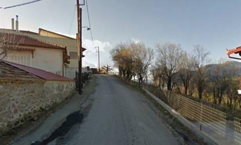 Φωκίδα: Ζευγάρι βρέθηκε σε γκρεμό 80 μέτρων - Νεκρός ο άνδρας