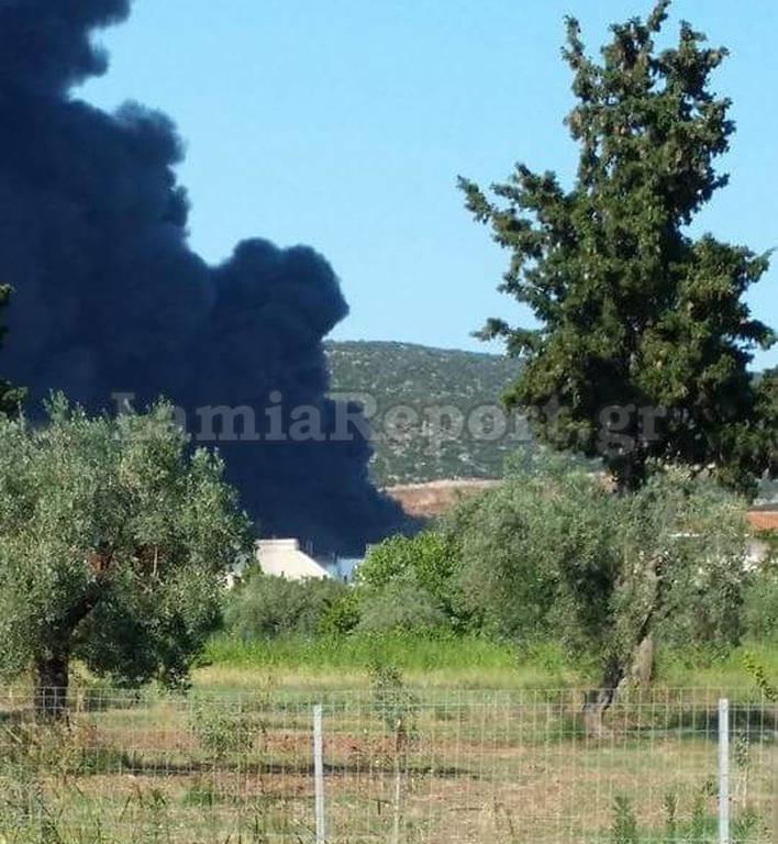 Φθιώτιδα: Μεγάλη πυρκαγιά στην Agroinvest (photos)