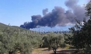 Φθιώτιδα: Υπό πλήρη έλεγχο η φωτιά στο εργοστάσιο