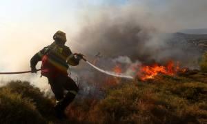 Κρήτη: Από φωτιά σε φωτιά τρέχει η… Πυροσβεστική - Νέο μέτωπο στον Πύργο