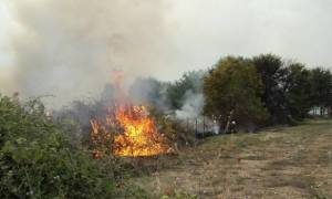 Πυρκαγιά ξέσπασε στο Πέραμα