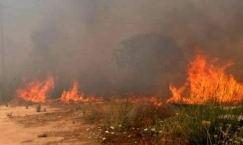 Ζάκυνθος: Πυρκαγιά σε δύσβατη περιοχή στη θέση Σκοπός