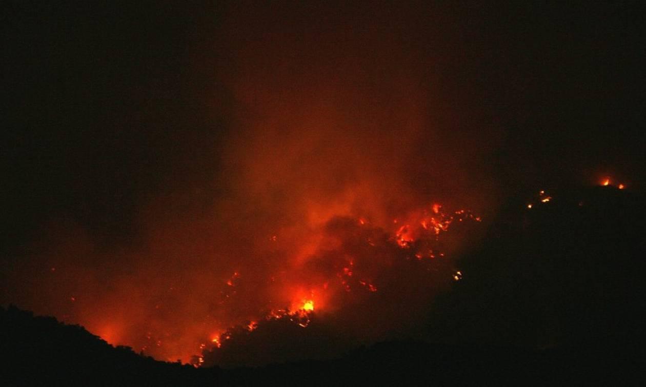Ηράκλειο: Δύσκολη βραδιά στην Αγία Πελαγία λόγω μεγάλης φωτιάς