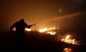 Υπό μερικό έλεγχο η πυρκαγιά στη Φυλή