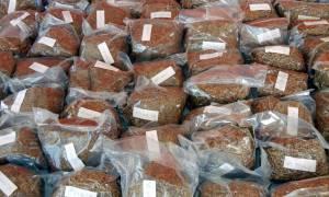 Ηράκλειο: Συνελήφθη με πέντε κιλά λαθραίου καπνού