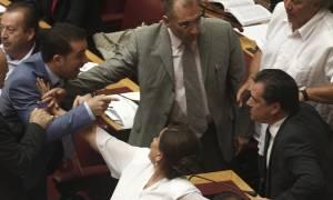 Μνημόνιο: Παραλίγο να πιαστεί στα χέρια με βουλευτή των ΑΝΕΛ ο Άδωνις (photos)
