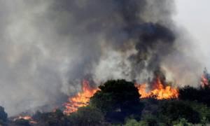 Μεγάλη φωτιά στη Νεάπολη Λακωνίας - Εκκενώθηκαν χωριά (video)