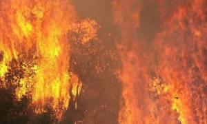 Δραματική η κατάσταση στη Λακωνία-Εκτός ελέγχου η πυρκαγιά, νεκρός ξένος υπήκοος (photos&video)