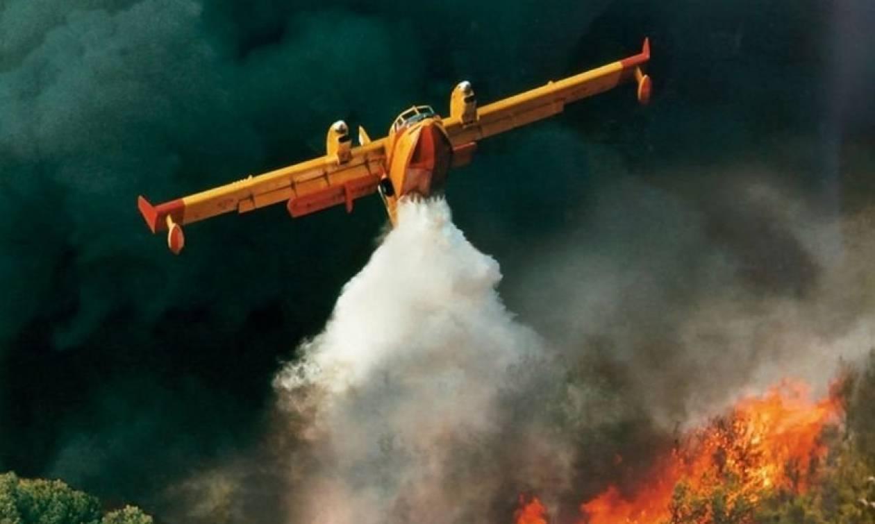 Αναγκαστική προσγείωση καναντέρ στη Λακωνία
