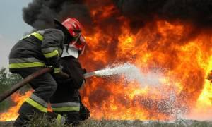 Η Ελλάδα παραδομένη στις φλόγες - Όλο το χρονικό των πυρκαγιών σε Καρέα, Λακωνία, Χαλκίδα, Μαλακάσα