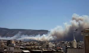Πυρκαγιά στον Καρέα - Οι πρώτες εικόνες από τη φωτιά