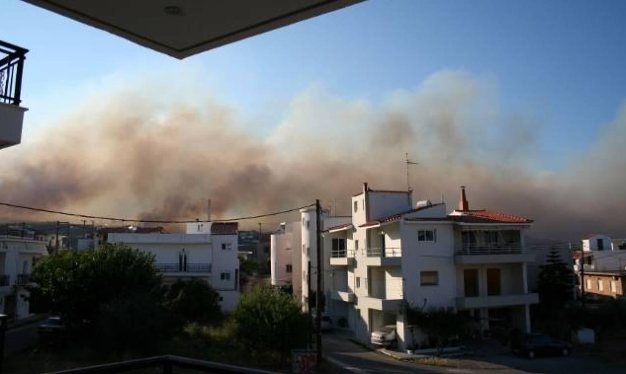 Πυρκαγιά Λακωνία: Ξένος υπήκοος νεκρός στη Νεάπολη