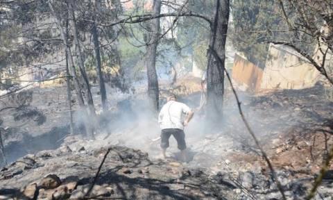 Πυρκαγιά στον Καρέα – Δείτε εικόνες όπως τις κατέγραψε η κάμερα του Newsbomb (photos - video)