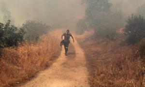 Πυρκαγιά και στην Αργολίδα