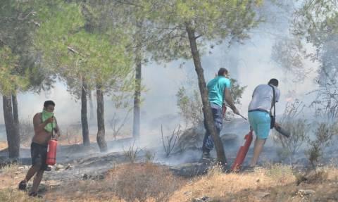 Πυρκαγιά: Μέτωπο φωτιάς και στη Μαλακάσα