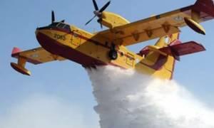 Πυρκαγιά στη Χαλκίδα: Εκκενώθηκαν σπίτια στο χωριό Αφράτι
