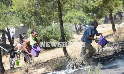 Πυρκαγιά-Καρέας: Μια ανάσα από αυλές σπιτιών στην Ηλιούπολη οι φλόγες