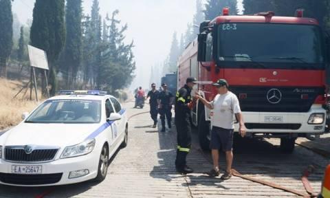 Πυρκαγιές: Η τελευταία ενημέρωση της Πυροσβεστικής Υπηρεσίας για τις φωτιές