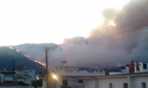 ΣΥΝΕΧΗΣ ΕΝΗΜΕΡΩΣΗ - Πυρκαγιά Λακωνία: Στις φλόγες η Νεάπολη - Καίγονται σπίτια