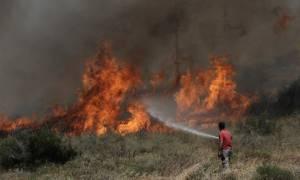 Πυρκαγιές: Εκκενώθηκαν τρεις κατασκηνώσεις στη Μαλακάσα