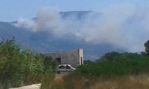 Πυρκαγιά Λακωνία: Διακοπή ρεύματος στη Νεάπολη και στα Κύθηρα λόγω της φωτιάς