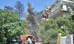 Πυρκαγιά: Προβλήματα ηλεκτροδότησης λόγω των πυρκαγιών σε Κύθηρα - Αττική
