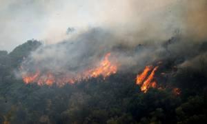 Πυρκαγιές: Νέο μέτωπο φωτιάς καίει στη Ρόδο
