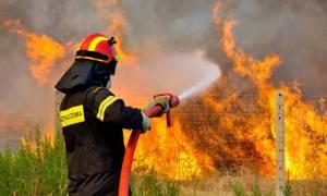Πυρκαγιές - Μέτωπο και στη Σκύρο, δεν απειλούνται κατοικίες