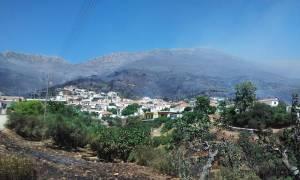 Πυρκαγιές: Νύχτα αγωνίας σε Λακωνία και Υμηττό - Σε ύφεση η φωτιά σε όλα τα μέτωπα