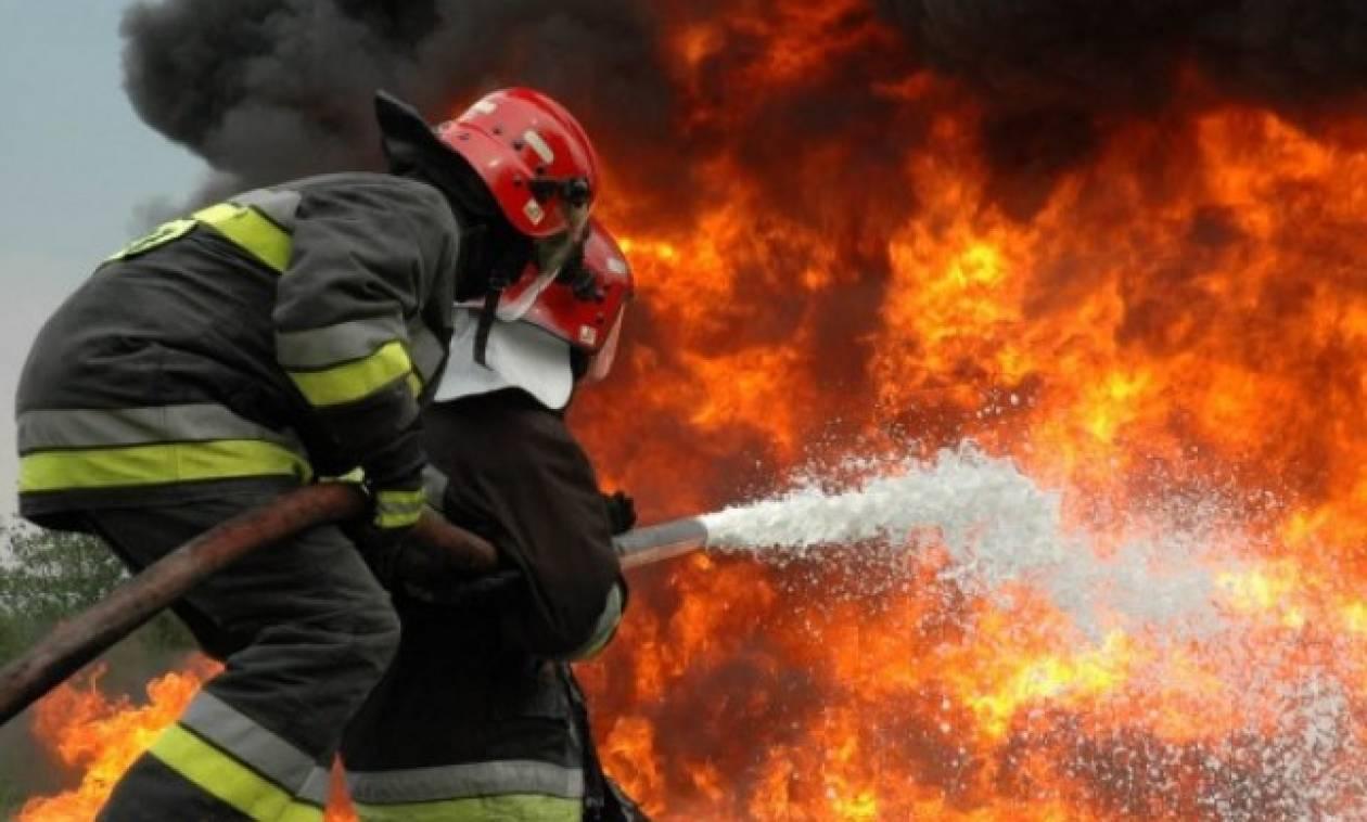 Σε ύφεση η μεγάλη φωτιά που απείλησε σπίτια και στο Δίστομο Βοιωτίας