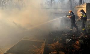 Σε ποιες περιοχές είναι πολύ υψηλός ο κίνδυνος πυρκαγιάς σήμερα (19/07)
