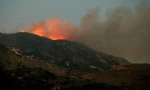 Πυρκαγιά στο Άργος