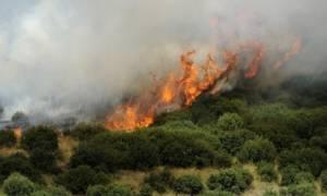 Πυρκαγιά: Αυτές είναι οι περιοχές υψηλού κινδύνου