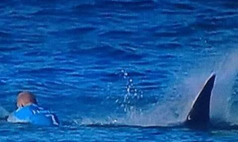 Βίντεο σοκ: Καρχαρίες επιτέθηκαν σε σέρφερ κατά τη διάρκεια αγώνα!