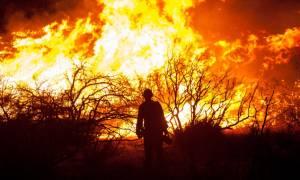 Ιταλία: Εκατόν εξήντα τρεις πυρκαγιές λόγω των υψηλών θερμοκρασιών!