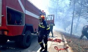 Πυρκαγιές-Υπό έλεγχο το μέτωπο στις Αρχάνες Ηρακλείου