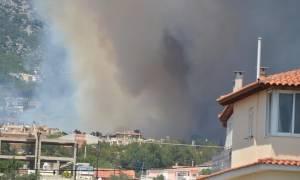 Πυρκαγιά στους πρόποδες της Πάρνηθας