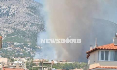 Πυρκαγιά Πάρνηθα-Δήμαρχος Αχαρνών: «Ελεγχόμενη η κατάσταση»