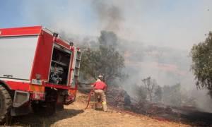 Πυρκαγιά - Αργολίδα: Δύο νέα μέτωπα ξέσπασαν σχεδόν την ίδια ώρα