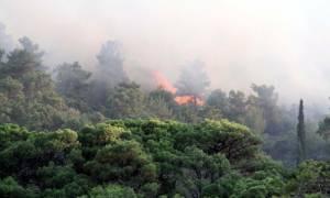 Πυρκαγιά και στο Πυθαγόρειο της Σάμου