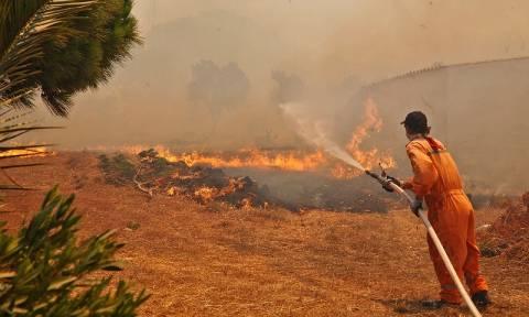 Πυρκαγιές - Λακωνία: Ανακοινώθηκαν τα μέτρα ανακούφισης των πληγέντων