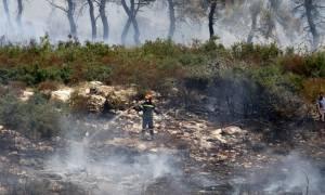 Καλαμάτα: Υπό έλεγχο η φωτιά που ξέσπασε στη χωματερή Φιλιατρών Μεσσηνίας